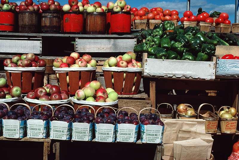 nicely organized food marketplace