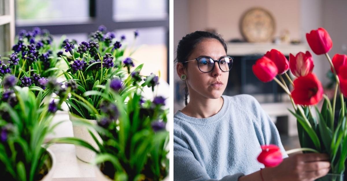 Flowers Indoors in Vases