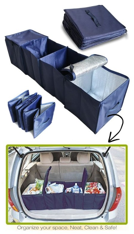 Compartmentalized Trunk Organizer