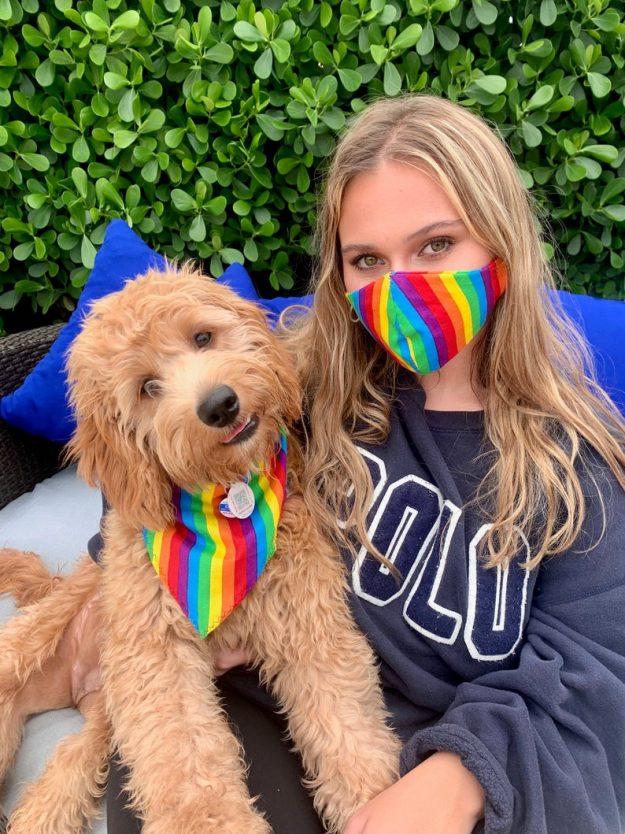 Dog Bandana and Matching Owner Face Mask Rainbow