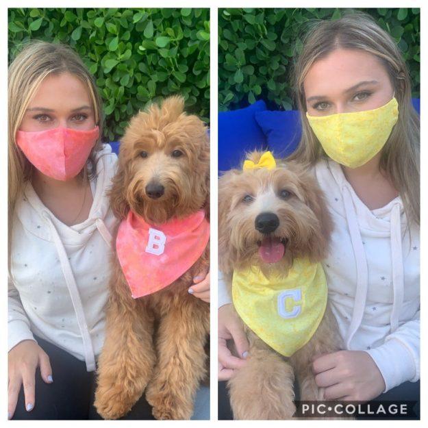 Dog Bandanas and Matching Owner Face Masks