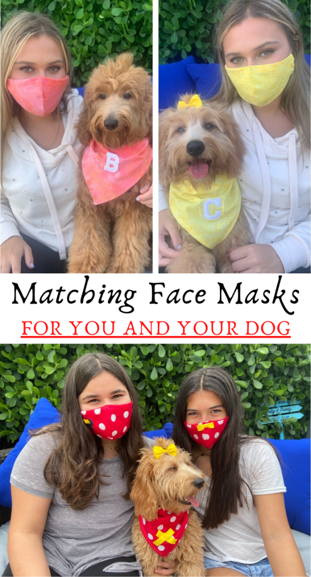 Matching face mask with your dogs bandana