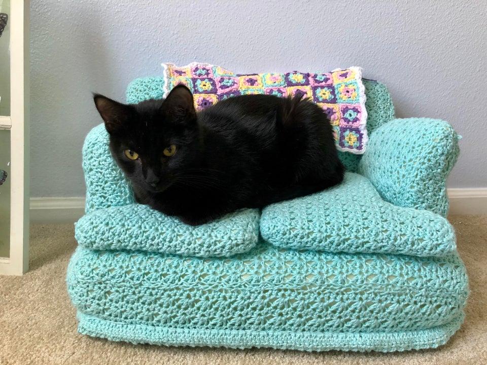 cat sitting on a crocheted miniature sofa